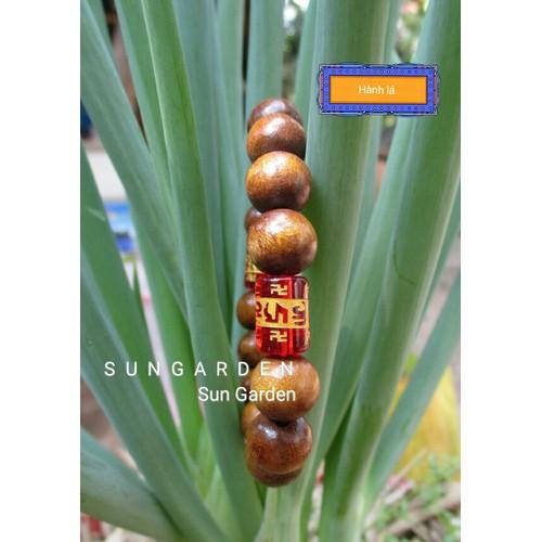 Vòng tay gỗ dâu tằm xịn trừ tà mix hạt khắc chú đỏ cho cả nam nữ