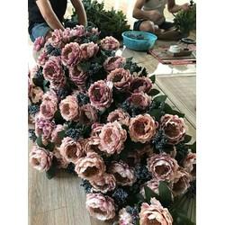 hoa trà đen