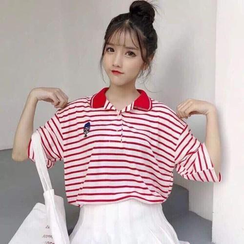 Áo thun cotton vằn sọc