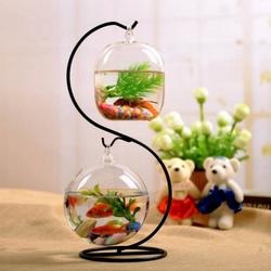 Bể cá mini chữ S - Tặng kèm tiểu cảnh mini