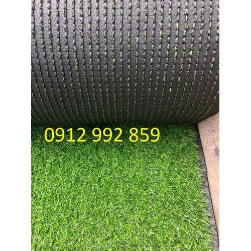 10 mét vuông thảm cỏ sân vườn cao 2cm, đẹp rẻ, khuyến mãi lớn