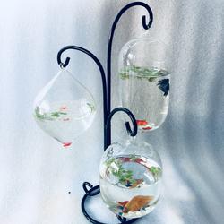 Bể cá mini treo 3 bình thủy tinh GN18