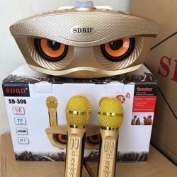 Loa hát karaoke - Loa Bluetooth Karaoke SD306 2 mic