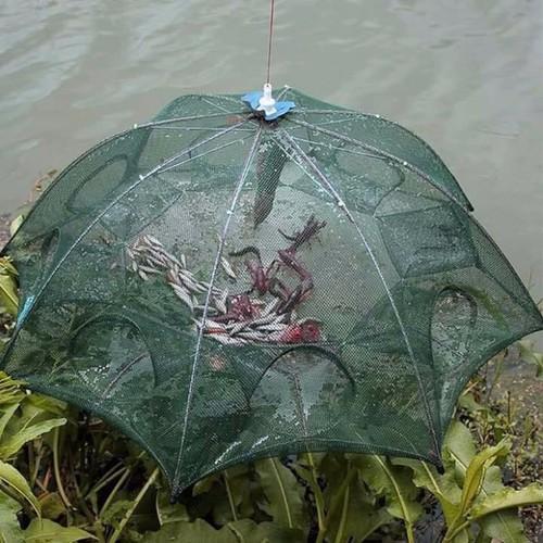 Lưới bát quái 12 mắt bắt cá tiện lợi đánh bắt cua bắt tôm của dân chài - 4778312 , 16898610 , 15_16898610 , 99000 , Luoi-bat-quai-12-mat-bat-ca-tien-loi-danh-bat-cua-bat-tom-cua-dan-chai-15_16898610 , sendo.vn , Lưới bát quái 12 mắt bắt cá tiện lợi đánh bắt cua bắt tôm của dân chài