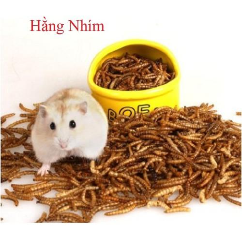 Thức Ăn Hamster - Đồ Ăn Chuột
