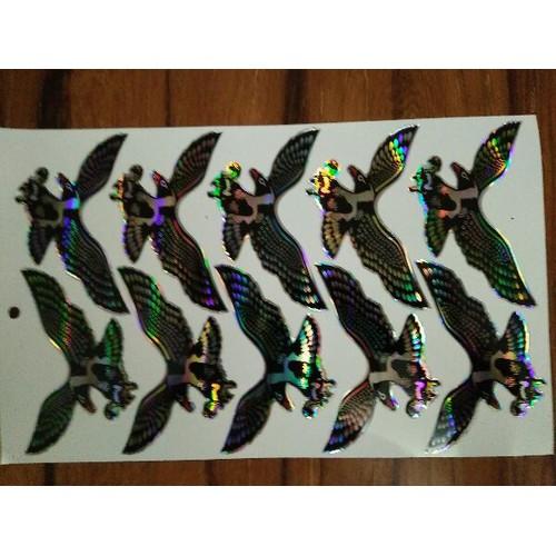 Bộ tem nổi hình chim đại bàng 3D trang trí xe