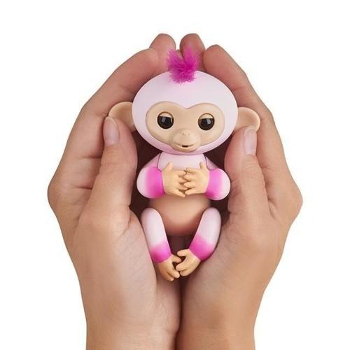 Khỉ leo ngón tay hàng độc - 4611818 , 16945438 , 15_16945438 , 170000 , Khi-leo-ngon-tay-hang-doc-15_16945438 , sendo.vn , Khỉ leo ngón tay hàng độc