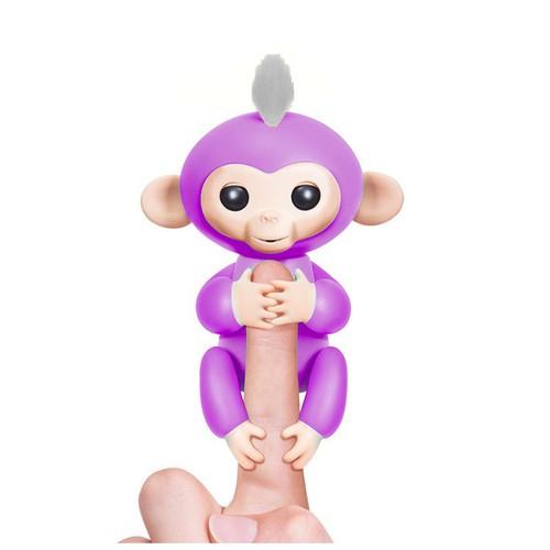 Khỉ leo ngón tay hàng độc - 4783145 , 16948396 , 15_16948396 , 170000 , Khi-leo-ngon-tay-hang-doc-15_16948396 , sendo.vn , Khỉ leo ngón tay hàng độc