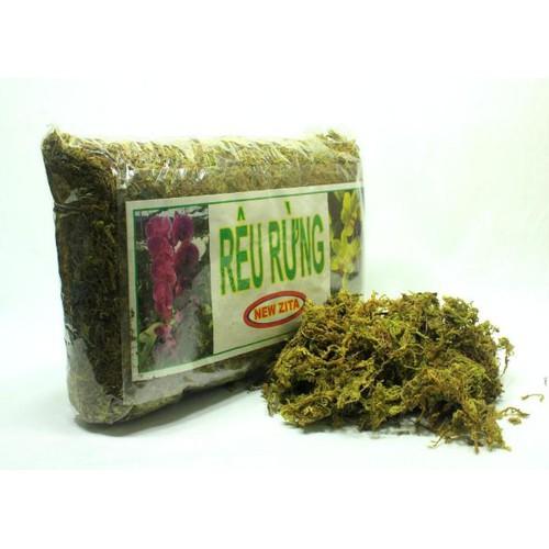 1kg rêu rừng trồng lan