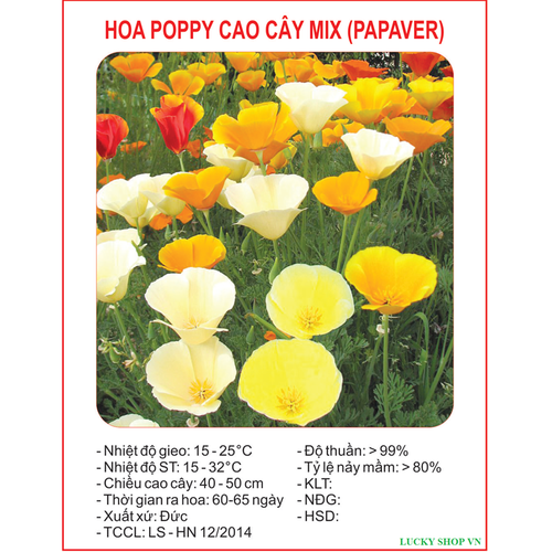 Hạt giống hoa Poppy cao cây mix nhiều màu - 50 hạt
