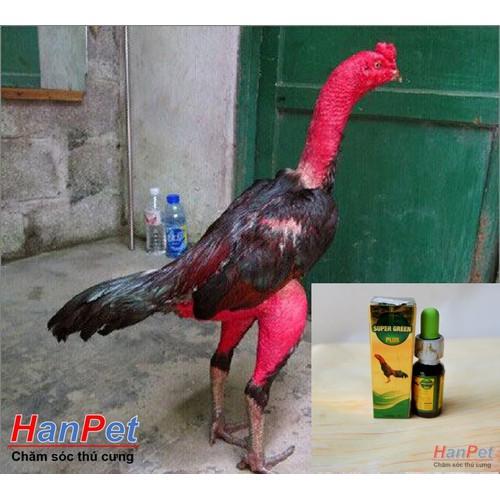 HCM-Đặc trị hen gà chọi HEN XANH,  long đờm gà, khó thở cấp tính gà đá dạng 10ml