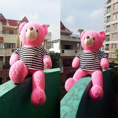 gau bong teddy 80CM - 6961773 , 16925378 , 15_16925378 , 210000 , gau-bong-teddy-80CM-15_16925378 , sendo.vn , gau bong teddy 80CM