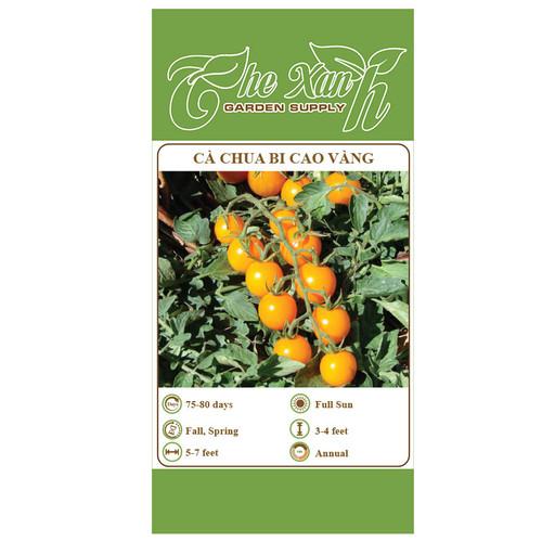 Hạt giống cà chua bi vàng cây cao - 7242164 , 17082573 , 15_17082573 , 10000 , Hat-giong-ca-chua-bi-vang-cay-cao-15_17082573 , sendo.vn , Hạt giống cà chua bi vàng cây cao