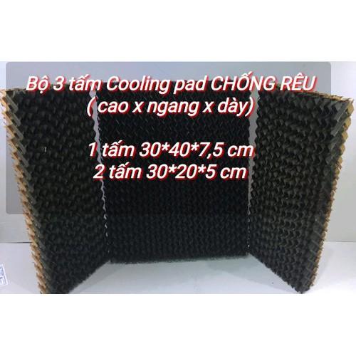 Bộ 3 tấm Cooling pad CHỐNG RÊU & quà tặng trị giá 30k