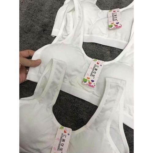 Combo 2 áo lót học sinh