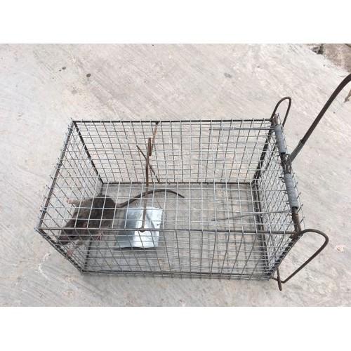 lồng bẫy chuột thông minh - 6328028 , 16437088 , 15_16437088 , 150000 , long-bay-chuot-thong-minh-15_16437088 , sendo.vn , lồng bẫy chuột thông minh