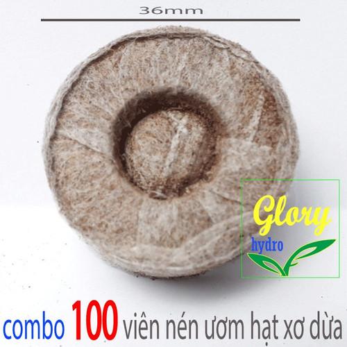 100 viên nén xơ dừa viên nén ươm hạt - GRH - XD100