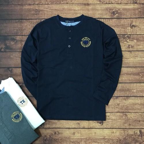Áo thun tay dài nam cotton 4 chiều thêu logo cao cấp