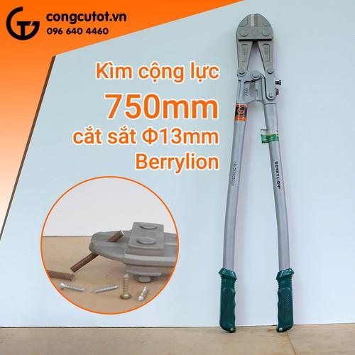 Kìm cộng lực Berryion 750mm