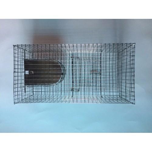 Bẫy chuột thông minh tặng kèm thuốc diệt chuột - 6444065 , 16525714 , 15_16525714 , 179000 , Bay-chuot-thong-minh-tang-kem-thuoc-diet-chuot-15_16525714 , sendo.vn , Bẫy chuột thông minh tặng kèm thuốc diệt chuột