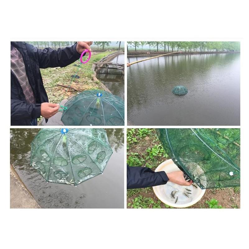 Lưới bắt cá bát quái thông minh – LBC1