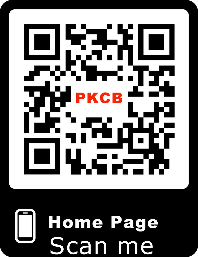 Tai nghe điện thoại nhét tai có dây Bass trầm hay giá rẻ PKCB V3 PF151 8