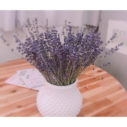 Bó hoa lavender khô Pháp KHÔNG GỒM BÌNH CẮM HOA - 4804176 , 17113174 , 15_17113174 , 260000 , Bo-hoa-lavender-kho-Phap-KHONG-GOM-BINH-CAM-HOA-15_17113174 , sendo.vn , Bó hoa lavender khô Pháp KHÔNG GỒM BÌNH CẮM HOA