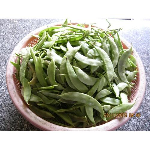 Hạt giống đậu ván - 21221740 , 24418986 , 15_24418986 , 19000 , Hat-giong-dau-van-15_24418986 , sendo.vn , Hạt giống đậu ván