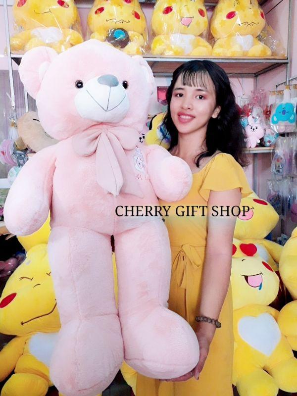Gấu Teddy Hồng Đeo Nơ 1m2 4