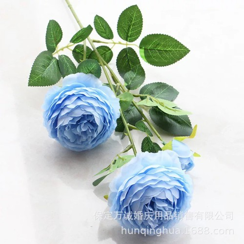 Cành 3 Bông Hoa mẫu đơn cỡ lớn màu xanh da trời - 7919180 , 17537482 , 15_17537482 , 40000 , Canh-3-Bong-Hoa-mau-don-co-lon-mau-xanh-da-troi-15_17537482 , sendo.vn , Cành 3 Bông Hoa mẫu đơn cỡ lớn màu xanh da trời