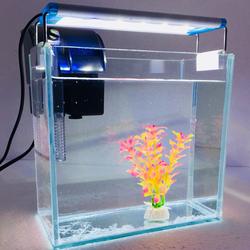Bể cá mini để bàn combo Hồ, lọc, đèn, phụ kiện