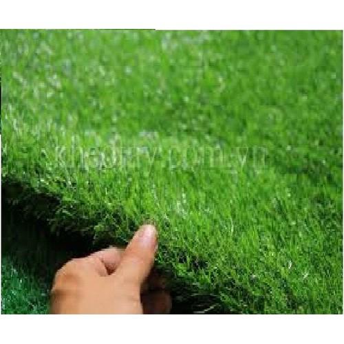 set 2 m vuông thảm cỏ nhân tạo cao 2cm-kt 2m x 1m