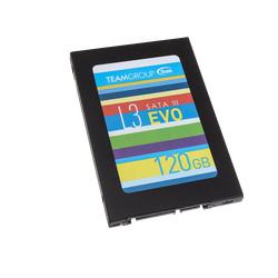 Ổ cứng SSD Team Group L3 Evo 120GB, hàng chính hãng bảo hành 36 tháng - SSD Team Group L3 Evo 120GB