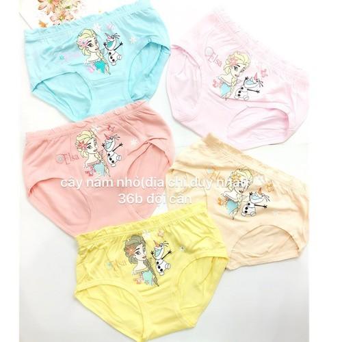 quần cho bé , combo 5c quần chip cotton cho bé