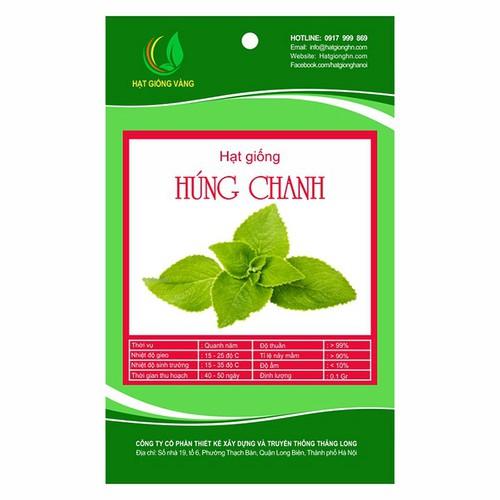 Hạt giống Húng chanh Golden Seeds 0.1 Gr - 7684543 , 17609817 , 15_17609817 , 27000 , Hat-giong-Hung-chanh-Golden-Seeds-0.1-Gr-15_17609817 , sendo.vn , Hạt giống Húng chanh Golden Seeds 0.1 Gr