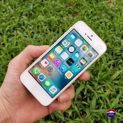 Iphone 5 Quốc Tế 16GB - tặng ốp cường lực