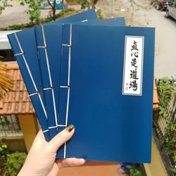 6 quyển vở cổ trang bìa xanh loại đẹp ảnh thật