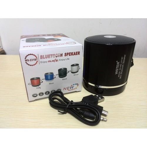 Loa Bluetooth không dây Wester kèm pin 5C nghe tốt