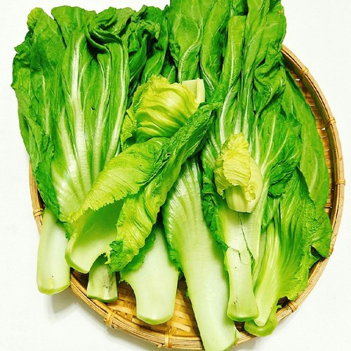 Gói 20 gram - hạt giống cải bẹ dưa pn
