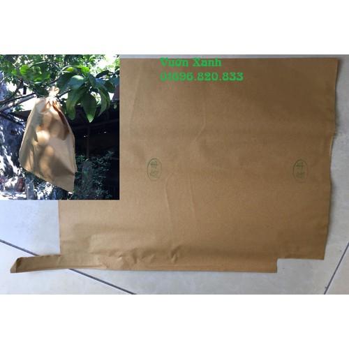 Combo 100 túi giấy vàng bao trái bưởi KT 30x35 cm có lót đen bên trong - 7599259 , 17733420 , 15_17733420 , 110000 , Combo-100-tui-giay-vang-bao-trai-buoi-KT-30x35-cm-co-lot-den-ben-trong-15_17733420 , sendo.vn , Combo 100 túi giấy vàng bao trái bưởi KT 30x35 cm có lót đen bên trong