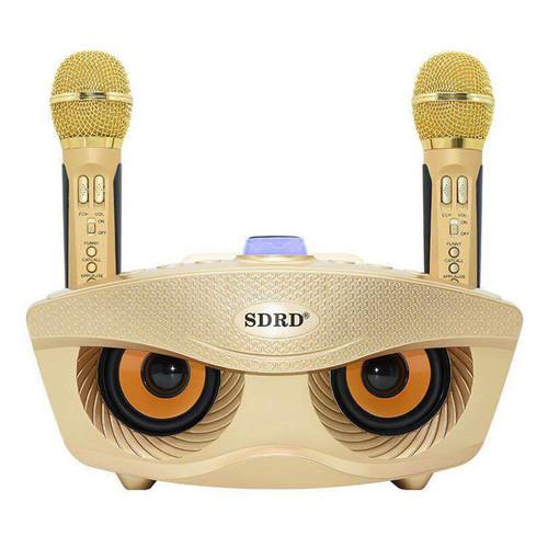 [ELCESALE GIẢM 20K] [Tặng 2 Micro] Loa Karaoke Bluetooth SDRD SD306 Cực Hay - BH 6 Tháng