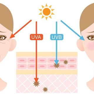 KEM CHỐNG NẮNG BIORE UV SPF 50+++++ -Hàng Nội địa Nhật 50g - kcn1jp 7