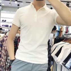Áo phông nam cổ đức mầu trắng