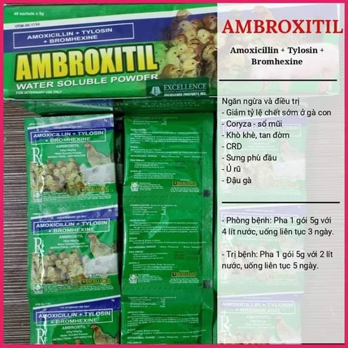 Combo 4 gói Úm gà con Amborxitil