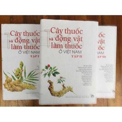 Cây thuốc và động vật làm thuốc ở Việt Nam - 7504582 , 17215827 , 15_17215827 , 990000 , Cay-thuoc-va-dong-vat-lam-thuoc-o-Viet-Nam-15_17215827 , sendo.vn , Cây thuốc và động vật làm thuốc ở Việt Nam