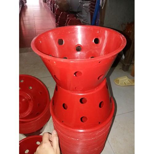10 chậu nhựa trồng lan siêu đẹp rộng 21cm