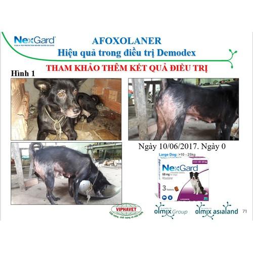Thuốc trị ve ghẻ, xà mâu, bọ chét trên chó NEXGARD của Pháp