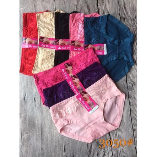 combo 10 chiếc lót cotton Thái mã 3050