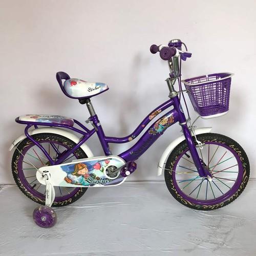 Xe đạp trẻ em DINHU nữ, màu tím