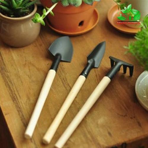 Bộ dụng cụ làm vườn mini : 3 món gồm 1 xẻng, 1 xúc, 1 cào - 11485009 , 17329086 , 15_17329086 , 35000 , Bo-dung-cu-lam-vuon-mini-3-mon-gom-1-xeng-1-xuc-1-cao-15_17329086 , sendo.vn , Bộ dụng cụ làm vườn mini : 3 món gồm 1 xẻng, 1 xúc, 1 cào